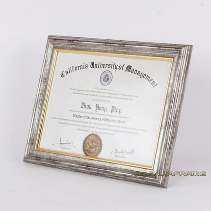 professional license frames